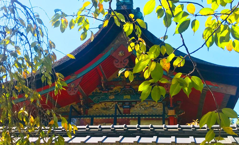 御香宮神社、本殿の極彩色