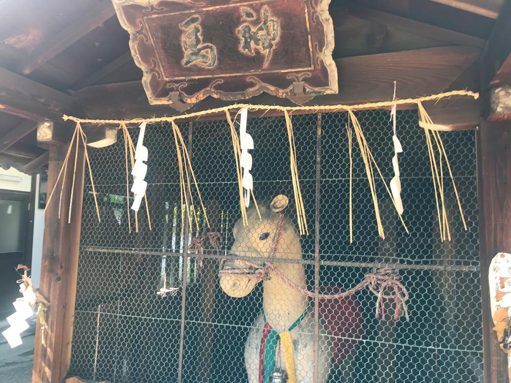 御香宮神社の神馬