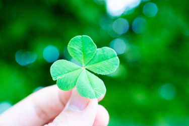 セレンディピティの具体例は?日常の中で幸運を引き寄せる方法!