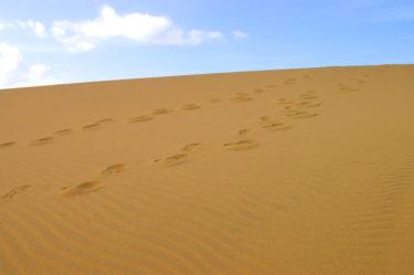 鳥取砂丘 長靴のレンタルはある?歩きやすいのはどんな靴?