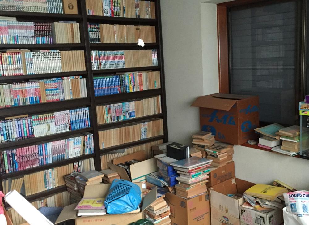 本棚からあふれた本