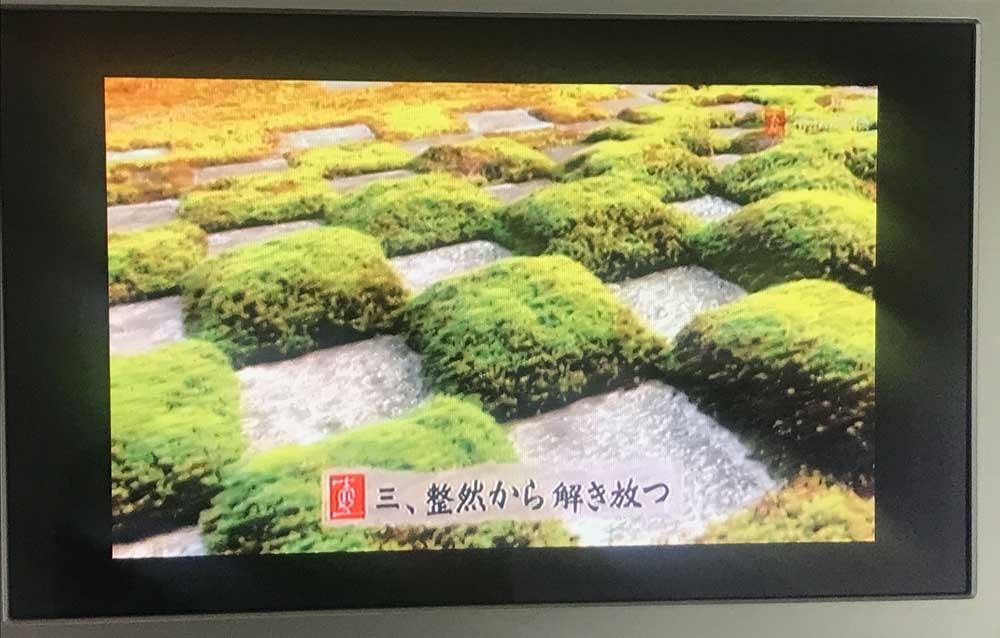 東福寺の庭の市松模様